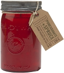 Pomegranate & Spruce - Paddywax Relish - Soy Candle - 9.5oz