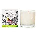 Wild Celery & Tonka Bean - Pre de Provence - Private Collection - Soy Candle - 8oz