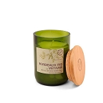 Bordeaux Fig and Vetiver - Paddywax Eco Green - Soy Candle - 8 oz
